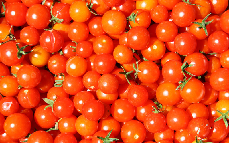 Don't store tomatoes in the fridge