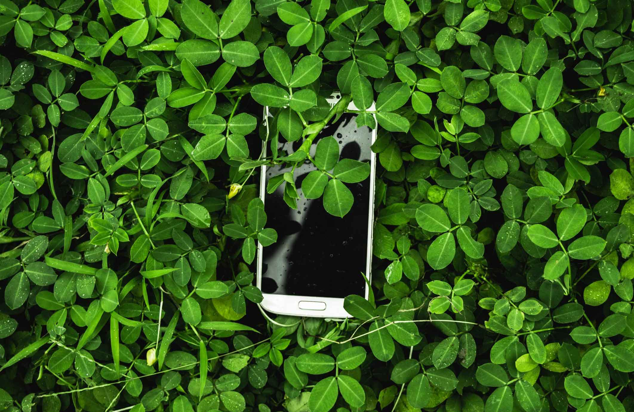 Abandoned or unsupported apps