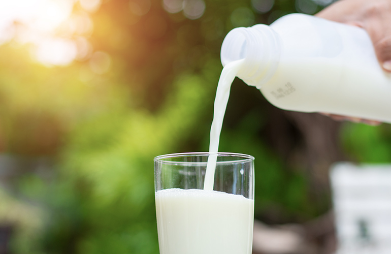 Dairy can cause acne